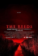 The Reeds  (The Reeds )