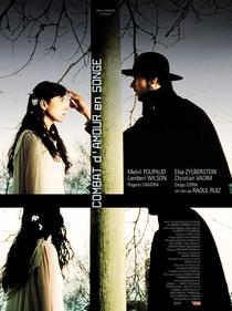 Combate de Amor em Sonho - Poster / Capa / Cartaz - Oficial 1