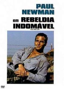 Rebeldia Indomável - Poster / Capa / Cartaz - Oficial 4