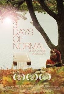 3 Days of Normal  - Poster / Capa / Cartaz - Oficial 1