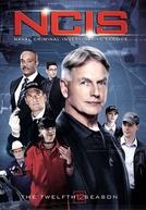 NCIS: Investigações Criminais  (12ª Temporada)
