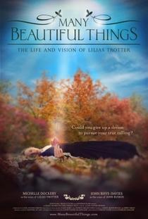 Many Beautiful Things - Poster / Capa / Cartaz - Oficial 1
