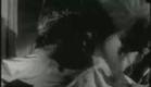 Spider Baby Trailer
