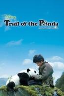 Na trilha do panda (Xiong mao hui jia lu)