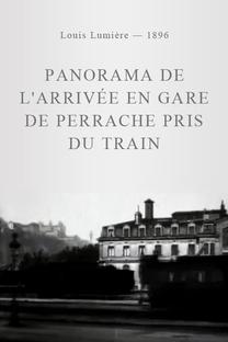 Panorama de l'arrivée en gare de Perrache pris du train - Poster / Capa / Cartaz - Oficial 1
