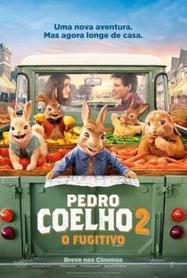 Pedro Coelho 2: O Fugitivo - Poster / Capa / Cartaz - Oficial 1