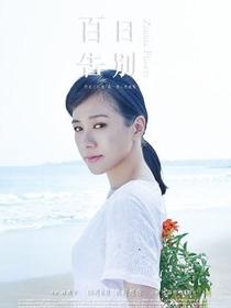 Zinnia Flower - Poster / Capa / Cartaz - Oficial 9