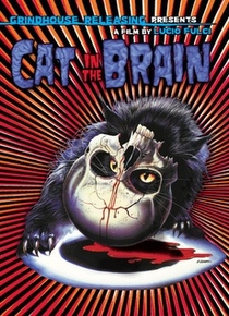 A Cat in the Brain - Poster / Capa / Cartaz - Oficial 5