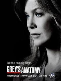 Grey's Anatomy (7ª Temporada) - Poster / Capa / Cartaz - Oficial 2