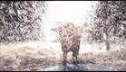Slava's Snow Show - Official Trailer [HD]