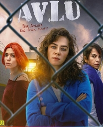 Prisão de Mulheres (2ª Temporada) - Poster / Capa / Cartaz - Oficial 4