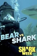 Bear Grylls vs. Tubarões (Bear vs. Shark)