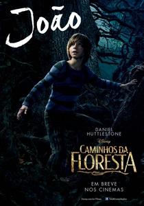 Caminhos da Floresta - Poster / Capa / Cartaz - Oficial 14