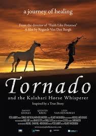 Tornado Indomável - Poster / Capa / Cartaz - Oficial 1