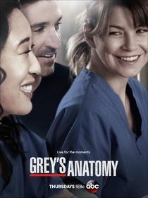 Grey's Anatomy (10ª Temporada) - Poster / Capa / Cartaz - Oficial 2
