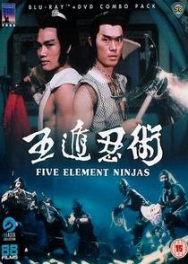 O Super Dragão Chinês - Poster / Capa / Cartaz - Oficial 4
