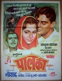Palki - Poster / Capa / Cartaz - Oficial 1