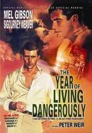 O Ano Que Vivemos em Perigo