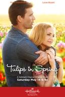 Tulips in Spring (Tulips in Spring)