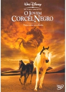 O Jovem Corcel Negro (Young Black Stallion )