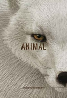 Animal (Animal)