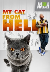 Meu Gato Endiabrado - Poster / Capa / Cartaz - Oficial 1