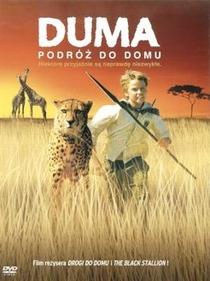 Duma - Poster / Capa / Cartaz - Oficial 2