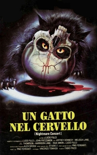 A Cat in the Brain - Poster / Capa / Cartaz - Oficial 1