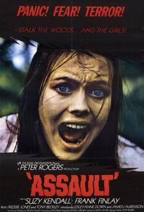 Terror no Bosque - Poster / Capa / Cartaz - Oficial 1