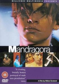 Mandrágora - Poster / Capa / Cartaz - Oficial 2