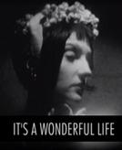 It's a Wonderful Life: Sparklehorse (It's a Wonderful Life: Sparklehorse)