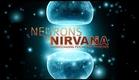 Neurônios ao Nirvana - Documentário Completo