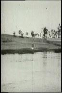 Panorama des rives du Nil, [I]