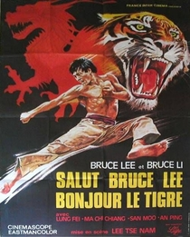 Exit the Dragon, Enter the Tiger - Poster / Capa / Cartaz - Oficial 4