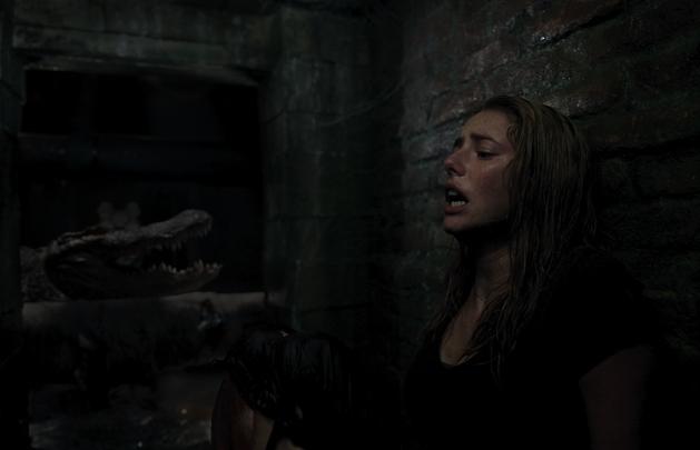 Assista ataque mortal de jacaré em cena de Predadores Assassinos