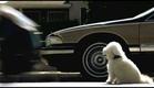 James Wan's Doggie Heaven