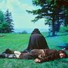 Rezenha Crítica O Enigma de Kaspar Hauser 1974