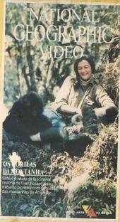 Os Gorilas das Montanhas - Poster / Capa / Cartaz - Oficial 1