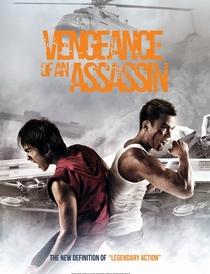 Vingança De Um Assassino - Poster / Capa / Cartaz - Oficial 2