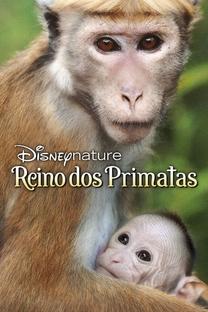 O Reino dos Primatas - Poster / Capa / Cartaz - Oficial 2