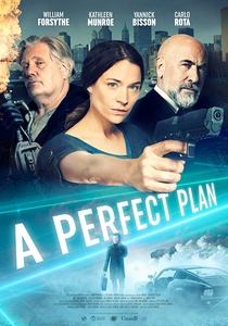 A Perfect Plan (2020) Assistir Online