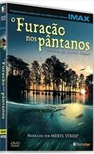 O Furacão nos Pântanos - Poster / Capa / Cartaz - Oficial 1