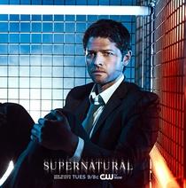 Sobrenatural (9ª Temporada) - Poster / Capa / Cartaz - Oficial 4