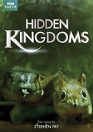 Reinos Ocultos (Hidden Kingdoms)