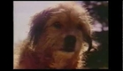 Benji The Hunted 1987 Trailer VHS Rip
