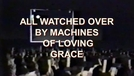 Vigiados por Máquinas Maravilhosas (All Watched Over by Machines of Loving Grace)