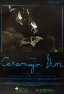 Caramujo-Flor - Poster / Capa / Cartaz - Oficial 1