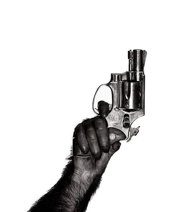 GARGALHANDO POR DENTRO: Notícia   Primeiro Teaser Poster De Planeta dos Macacos 2
