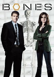 Bones (1ª Temporada) - Poster / Capa / Cartaz - Oficial 1
