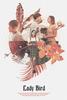 Lady Bird: A Hora de Voar